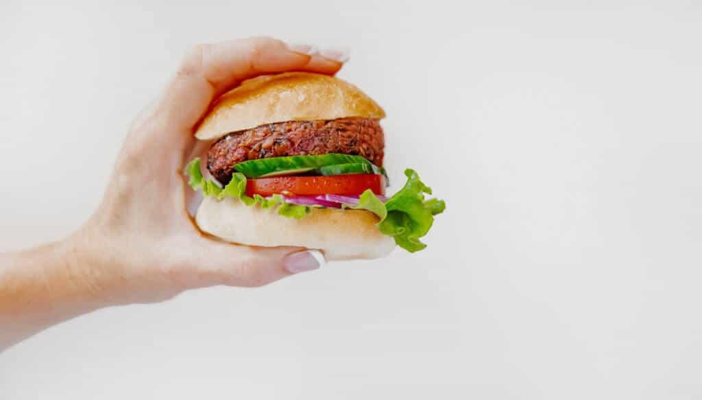 Modern Meat burger