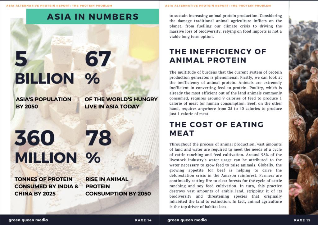 Asia Alternative Protein Report Screenshot 1 (Source- Green Queen Media)