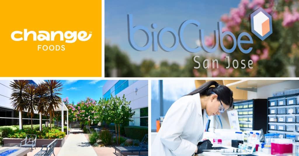 BioCube Change Foods