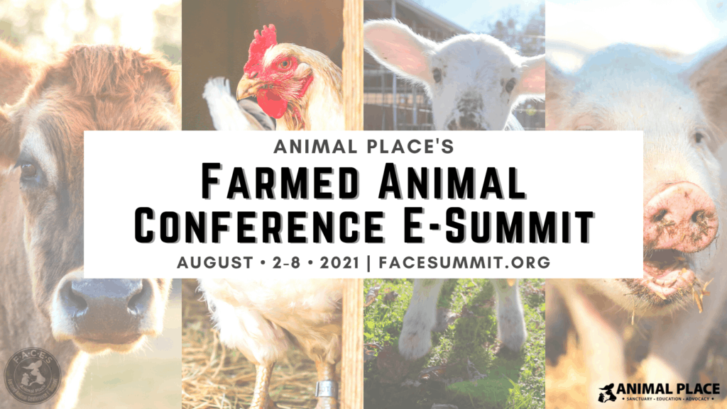 FACES 2021 Animal Equality