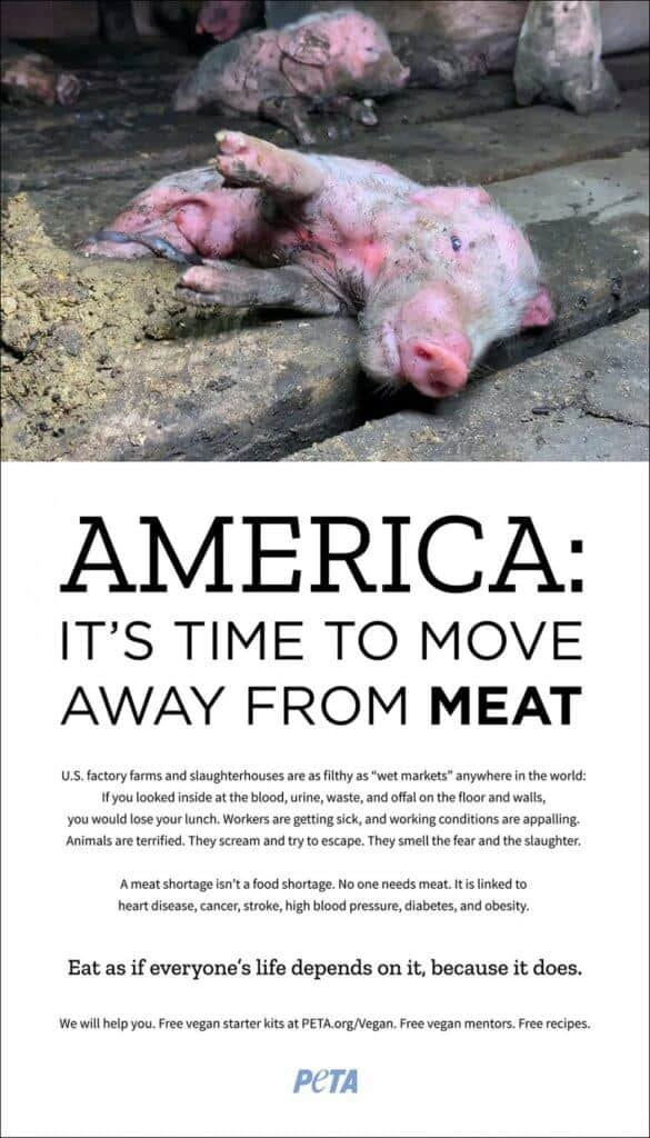 PETA Washington Post ad