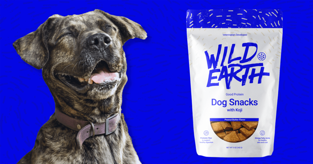 Wild Earth snacks