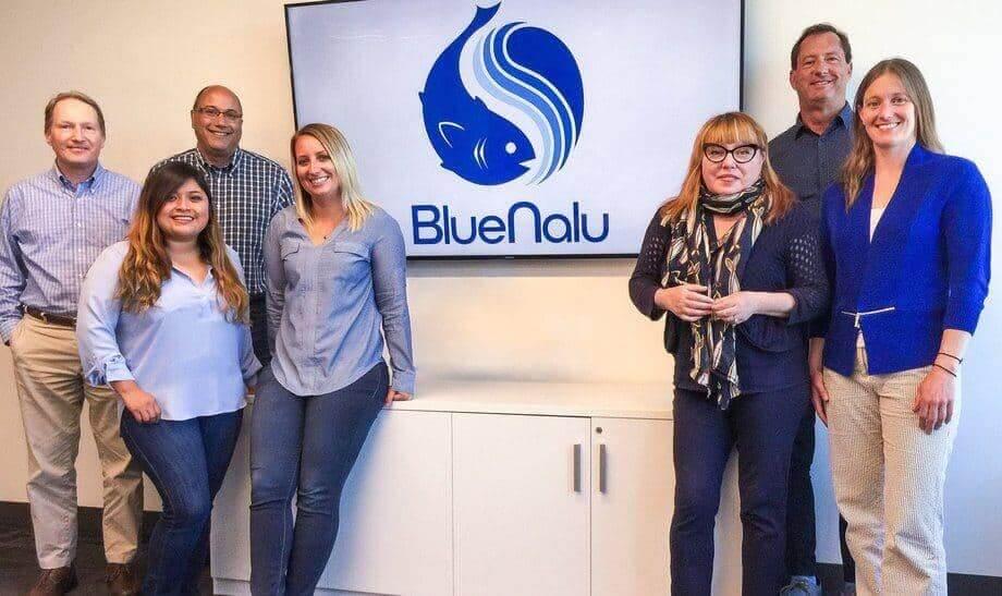bluenalu team