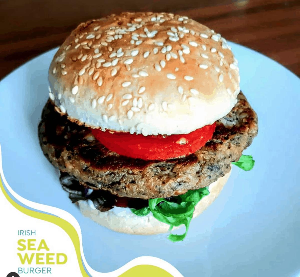 Plantruption sea weed burger