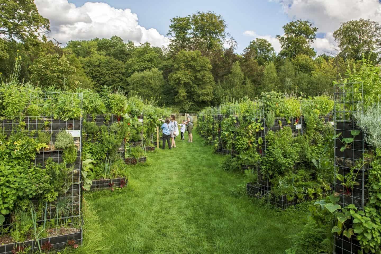 Peas&Love urban farms